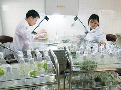 Khảo sát, đánh giá thực trạng thành lập và hoạt động của doanh nghiệp trong các Viện nghiên cứu, trường Đại học