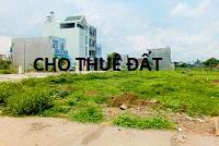 Cho Công ty TNHH MTV dầu khí Thanh Tin thuê đất tại Cụm Công nghiệp Krông Búk