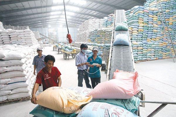 Thực hiện giao, nhận gạo dự trữ quốc gia hỗ trợ.