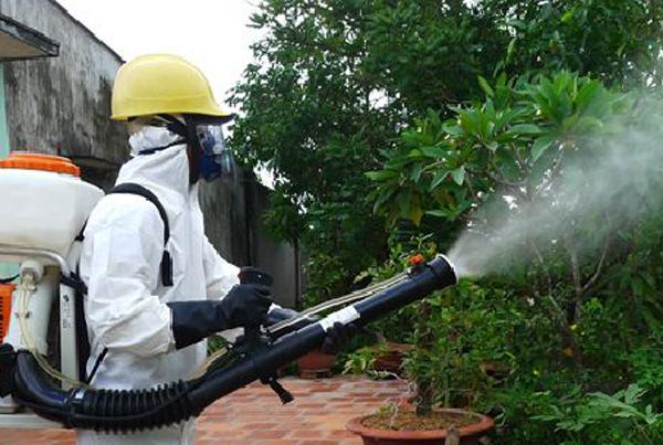 Tăng cường lãnh đạo, chỉ đạo công tác phòng, chống bệnh sốt xuất huyết trên địa bàn tỉnh.