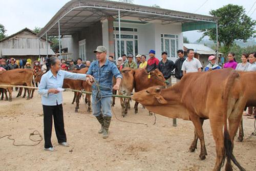 """UBND tỉnh ban hành Kế hoạch thực hiện Chương trình hành động quốc gia """"Không còn nạn đói ở Việt Nam đến năm 2025"""""""