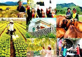 Quyết định về việc điều chỉnh tên danh mục dự án trên địa bàn xã Ea Nam, huyện Ea H'leo tại Phụ lục kèm theo Quyết định số 1403/QĐ-UBND ngày 25/6/2018 của UBND tỉnh.