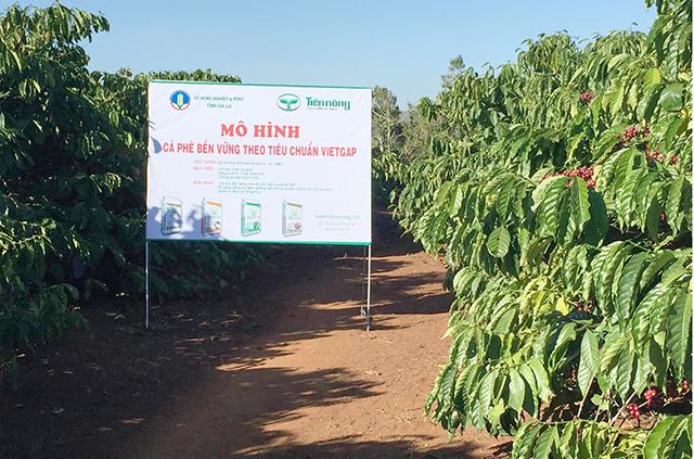 Phê duyệt Kế hoạch lựa chọn nhà thầu công trình đầu tư cơ sở hạ tầng phục vụ sản xuất cà phê bền vững cho HTX Nông nghiệp và Dịch vụ Bình Minh, xã Cư Suê, huyện Cư M'gar