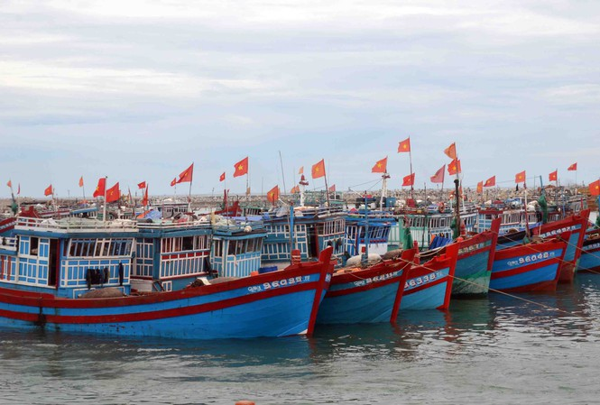 Báo cáo số lượng tàu cá có chiều dài lớn nhất từ 6 mét trở lên.