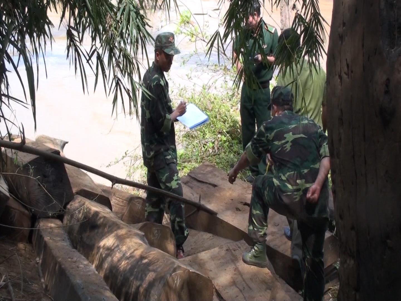 Bộ đội Biên phòng Đắk Lắk phát hiện và thu giữ hơn 5 khối gỗ vô chủ