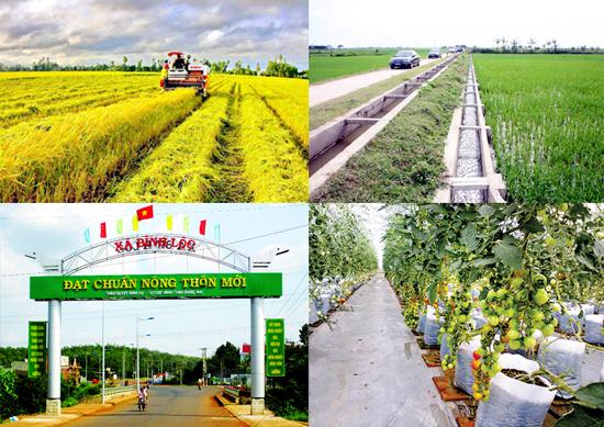 Chủ trương tổ chức Hội nghị tổng kết 10 năm thực hiện Chương trình mục tiêu quốc gia xây dựng nông thôn mới, giai đoạn 2010-2020 tỉnh Đắk Lắk.