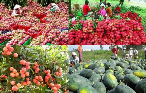 Tổng hợp số liệu hỗ trợ nông nghiệp trong nước và trợ cấp xuất khẩu nông sản giai đoạn 2014-2018 cho WTO.