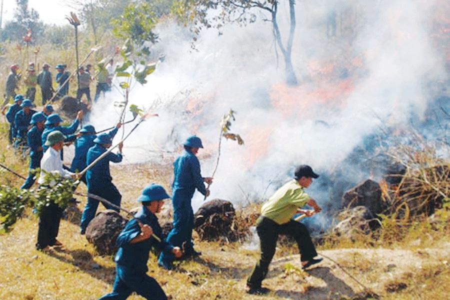 Thủ tướng Chính phủ chỉ thị tăng cường các biện pháp cấp bách phòng cháy, chữa cháy rừng