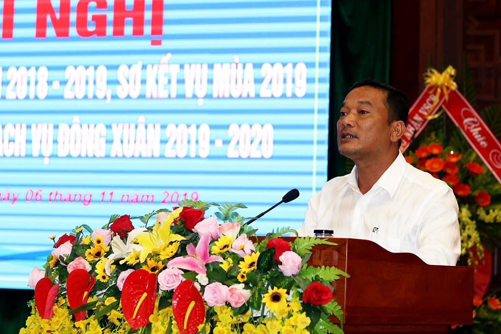 UBND tỉnh triển khai kế hoạch vụ Đông Xuân 2019 – 2020