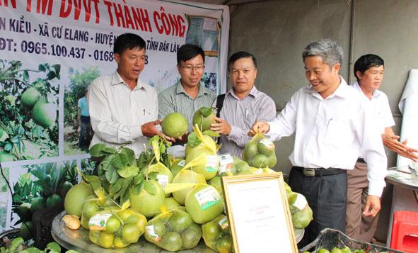 Tổ chức Hội chợ nông nghiệp và sản phẩm OCOP khu vực Tây Nguyên tại tỉnh Đắk Lắk năm 2019