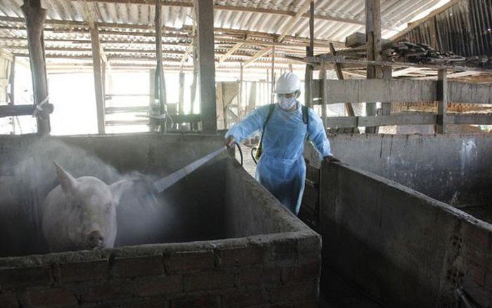 Tập trung triển khai quyết liệt, đồng bộ các giải pháp phòng, chống dịch bệnh gia súc, gia cầm vụ Đông Xuân trên địa bàn tỉnh Đắk Lắk