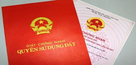 Giao 1.281,8 m2 đất tại phường An Lạc, thị xã Buôn Hồ cho Cục Thống kê tỉnh