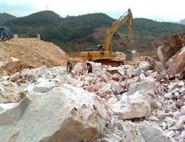 Cho Công ty TNHH Hùng Anh thuê đất