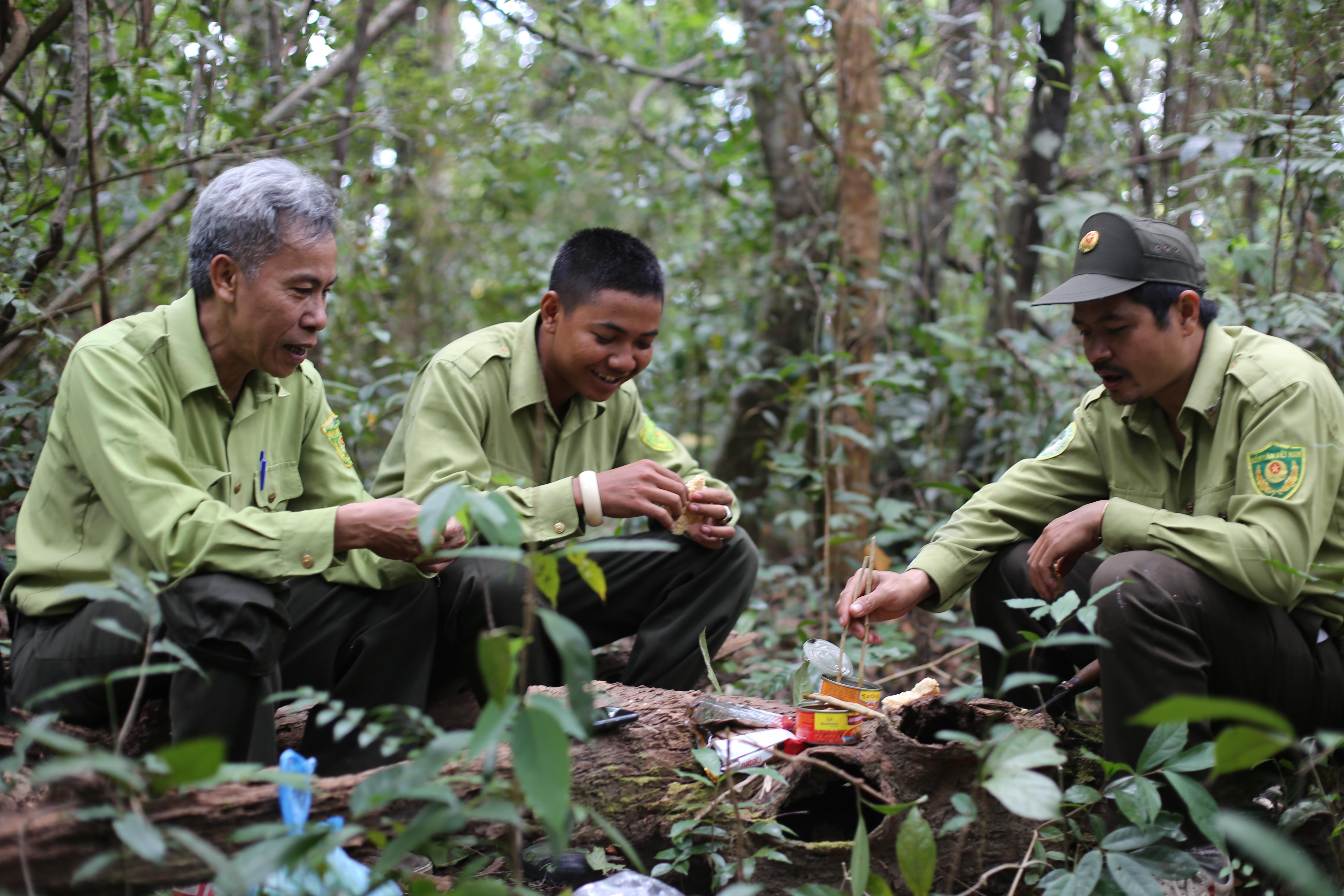 Theo chân kiểm lâm tìm báu vật của rừng Yok Đôn