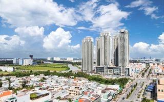 Rà soát, tổng hợp và báo cáo về tình hình phát triển đô thị năm 2019 trên địa bàn tỉnh.