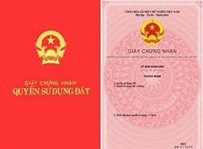 Giao đất cho Trường Tiểu học Phú Vinh
