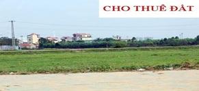 Cho phép Công ty TNHH Phát triển Chợ và Du lịch Phương Nam thuê đất