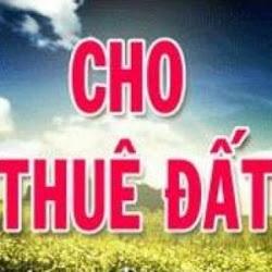 Cho phép Công ty TNHH Bình Thuận Buôn Hồ chuyển mục đích sử dụng đất và thuê đất