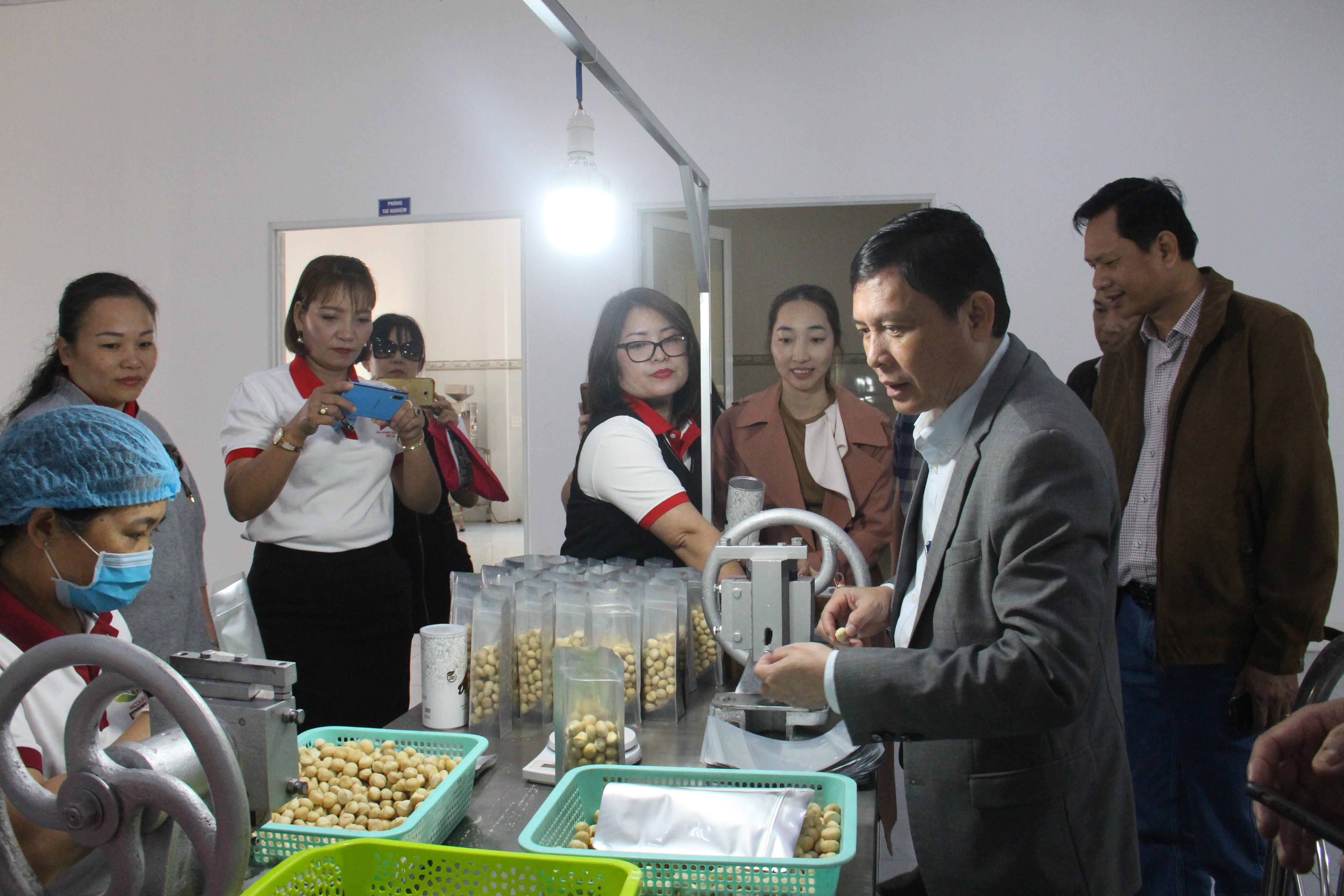 Lãnh đạo UBND tỉnh thăm, chúc Tết doanh nghiệp huyện Krông Năng