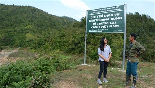 Quy định số lần tạm ứng, tỷ lệ tạm ứng tiền dịch vụ môi trường rừng hàng năm trên địa bàn tỉnh Đắk Lắk