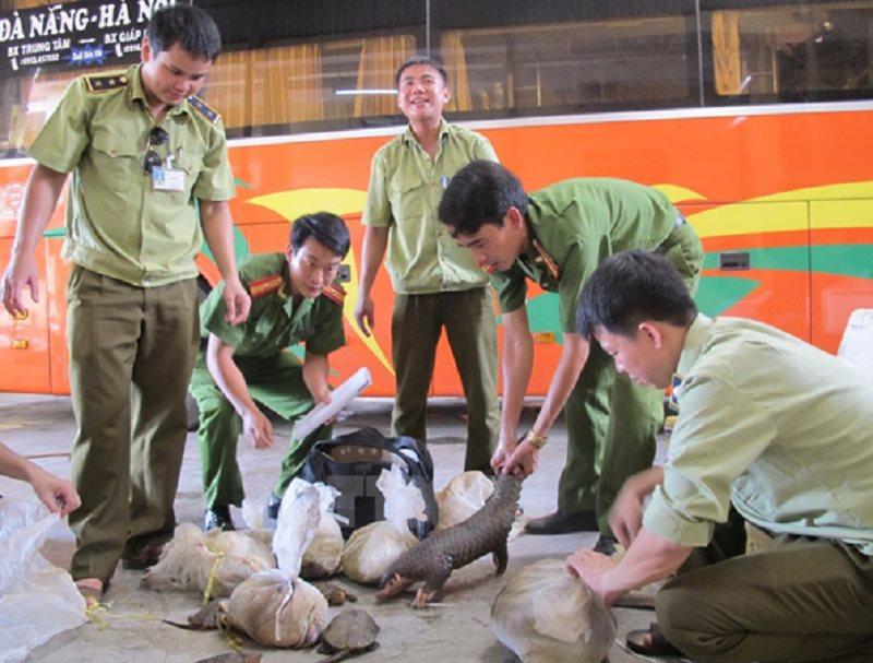 Kiểm soát hoạt động nhập khẩu động vật hoang dã theo Chỉ thị số 05/CT-TTg của Thủ tướng Chính phủ