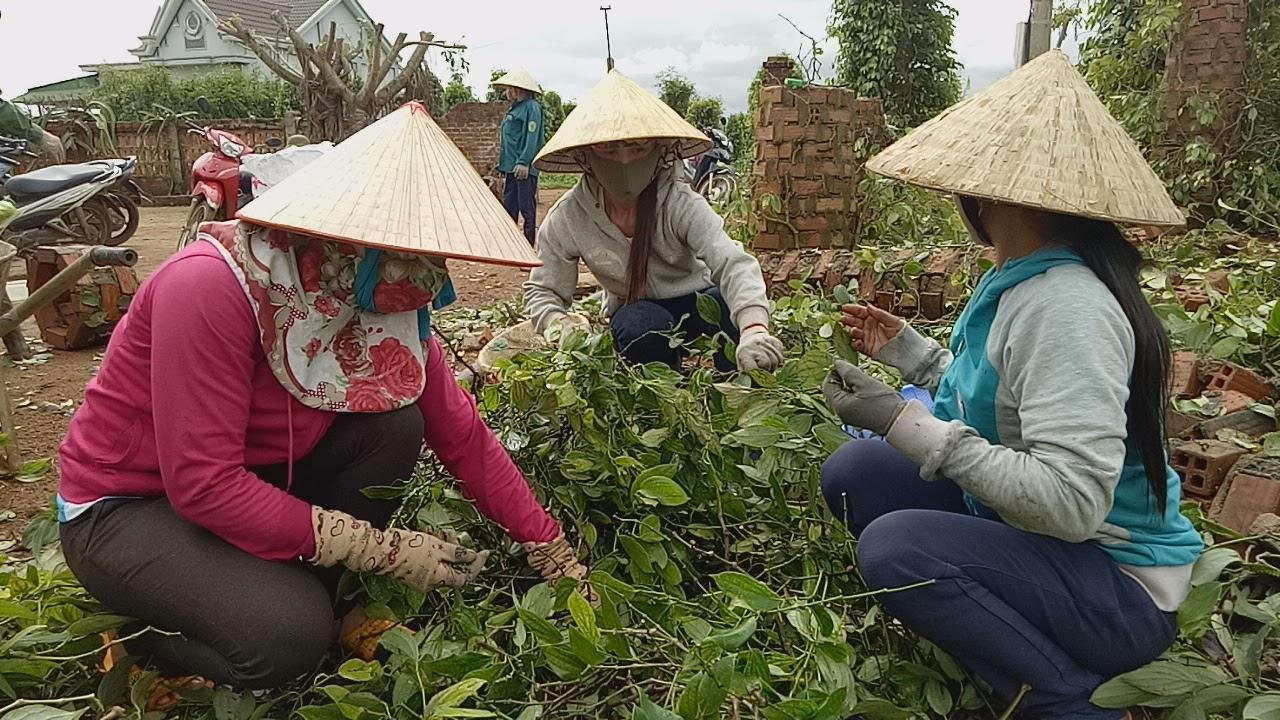 """Hiệu quả từ cuộc vận động """"Xây dựng gia đình 5 không, 3 sạch"""" gắn với xây dựng nông thôn mới tại huyện M'Drắk"""