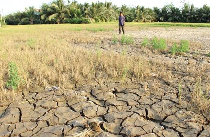 Phương án ứng phó với hạn hán trong mùa khô năm 2019-2020 trên địa bàn tỉnh Đắk Lắk