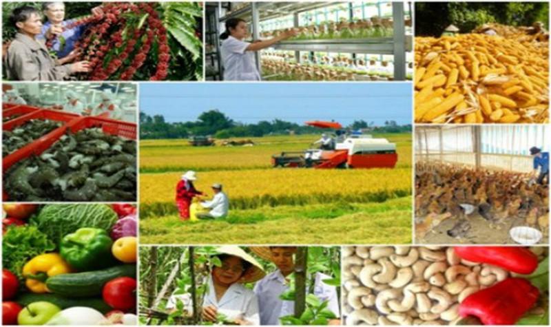 Tham mưu xây dựng cổng thông tin, chợ điện tử phục vụ giao dịch thương mại thị trường nông, lâm, ngư nghiệp trên địa bàn tỉnh.