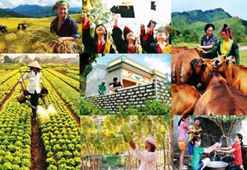 Kế hoạch tổng kết lĩnh vực giảm nghèo giai đoạn 2011-2020 trên địa bàn tỉnh