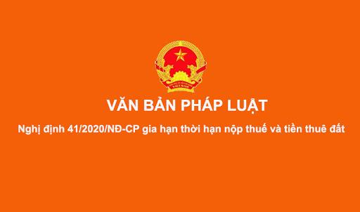 Triển khai Nghị định số 41/2020/NĐ-CP ngày 08/4/2020 của Chính phủ