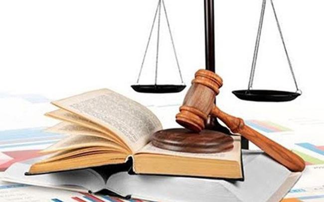 Triển khai thực hiện Nghị định số 43/2020/NĐ-CP ngày 08/4/2020 của Chính phủ