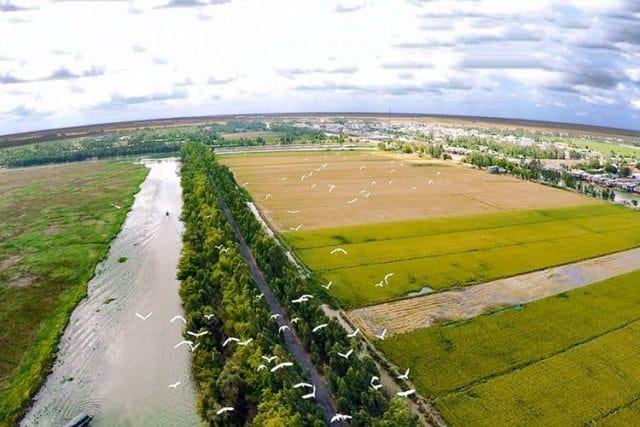Công ty TNHH MTV cà phê Ea Sim thuê 39.189,8 m2 đất tại xã Ea Ktur, huyện Cư Kuin để sử dụng vào mục đích đất phi nông nghiệp