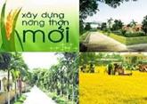 Đôn đốc đẩy nhanh tiến độ thực hiện Chương trình MTQG xây dựng nông thôn mới năm 2020