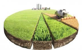 Nghị quyết 67/NQ-CP phê duyệt Nhiệm vụ lập Quy hoạch sử dụng đất quốc gia thời kỳ 2021 - 2030, tầm nhìn đến năm 2050.