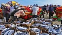 Chỉ thị số 09  về việc nghiêm cấm hành vi hủy diệt trong khai thác  thủy sản trên địa bàn tỉnh Đắk Lắk