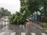 Phòng chống thiên tai đảm bảo cho người, nhà ở và công trình xây dựng mùa mưa bão năm 2020
