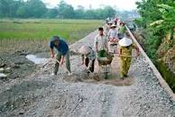 Đôn đốc tiến độ giải ngân kế hoạch vốn thực hiện Chương trình MTQG xây dựng Nông thôn mới năm 2020.