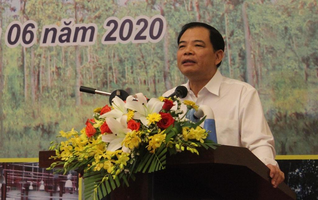 Hội nghị Tăng cường công tác quản lý bảo vệ rừng, tháo gỡ khó khăn, thúc đẩy phát triển sản xuất lâm nghiệp các tỉnh Tây Nguyên