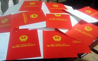 Quyết định về việc thu hồi 14.706,3 m2 đất tại phường Ea Tam, thành phố Buôn Ma Thuột của Công ty cổ phần Bông Tây Nguyên