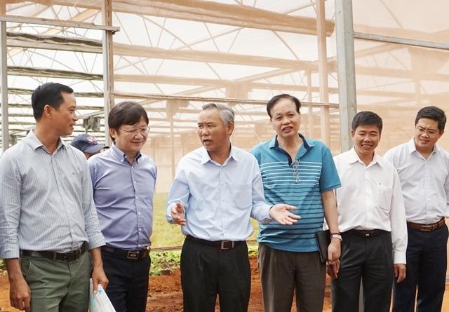 Đắk Lắk đề xuất cơ chế, chính sách hỗ trợ lĩnh vực quản lý chất lượng vật tư nông nghiệp, an toàn thực phẩm nông, lâm, thủy sản