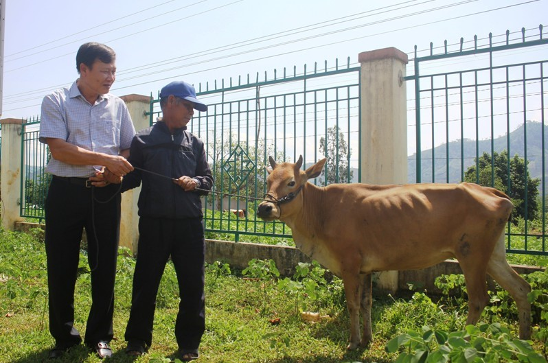Trao tặng mô hình phát triển kinh tế cho người có công với cách mạng thuộc diện hộ nghèo trên địa bàn huyện Krông Bông