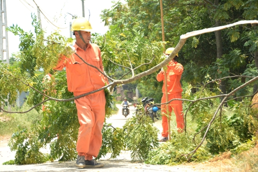 Tăng cường tần suất kiểm tra kỹ thuật đường dây, an toàn lưới điện mùa mưa bão