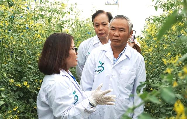Đắk Lắk dành 42 tỷ đồng hỗ trợ lãi suất cho doanh nghiệp đầu tư vào nông nghiệp