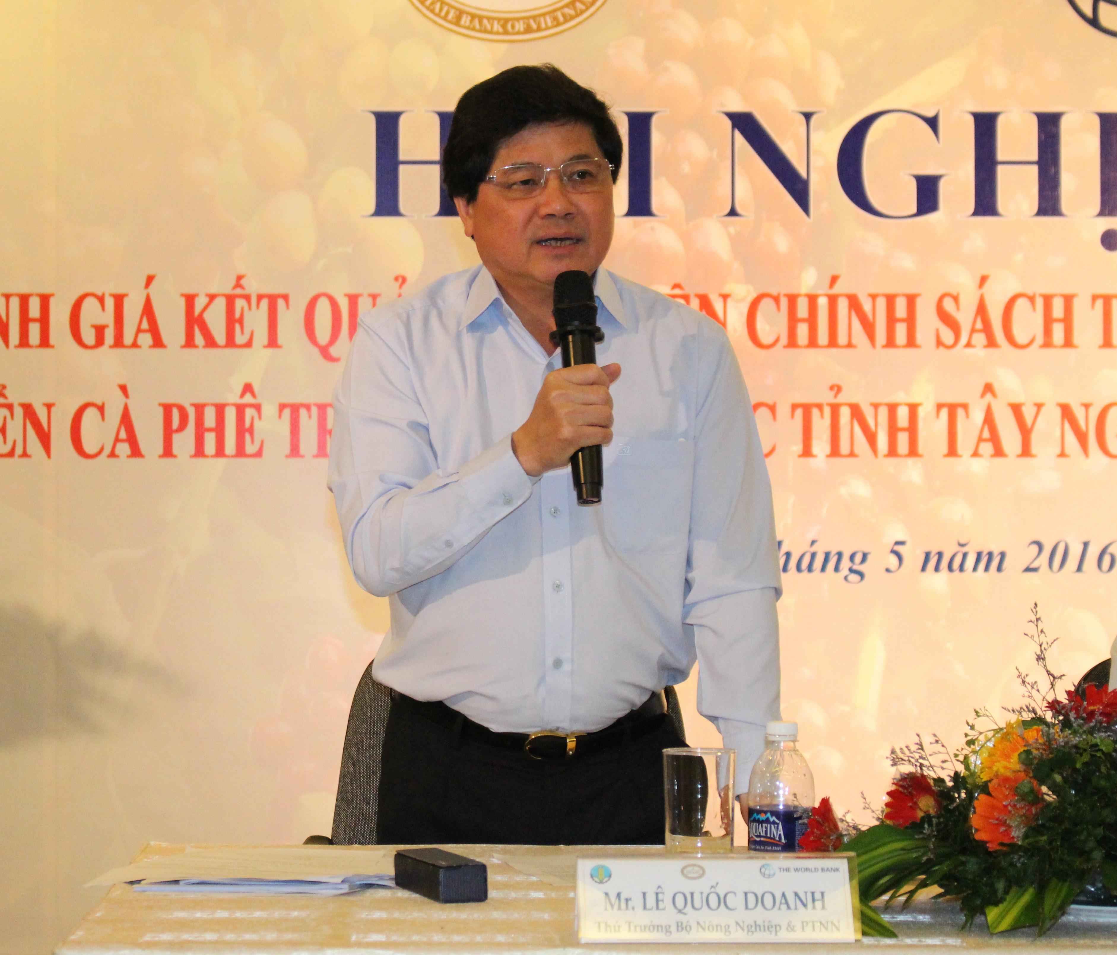 Đề xuất giải pháp tháo gỡ khó khăn trong đầu tư tín dụng và cho vay tái canh cà phê tại các tỉnh Tây Nguyên và Đông Nam Bộ.
