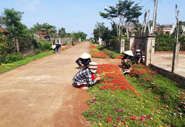 Tổ chức cuộc thi báo chí viết về nông thôn mới và cuộc thi ảnh về nông thôn mới giai đoạn 2010-2020