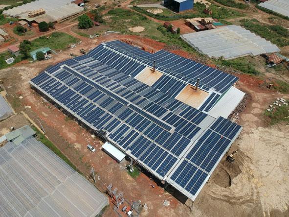 Chấn chỉnh trang trại nông nghiệp lắp đặt hệ thống tấm pin mặt trời chưa đúng quy định