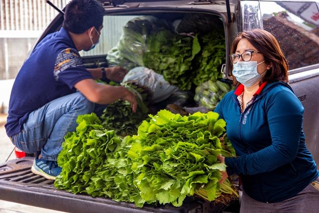 Người dân Đắk Lắk ủng hộ hàng chục tấn rau, củ và nhu yếu phẩm cho Đà Nẵng chống dịch