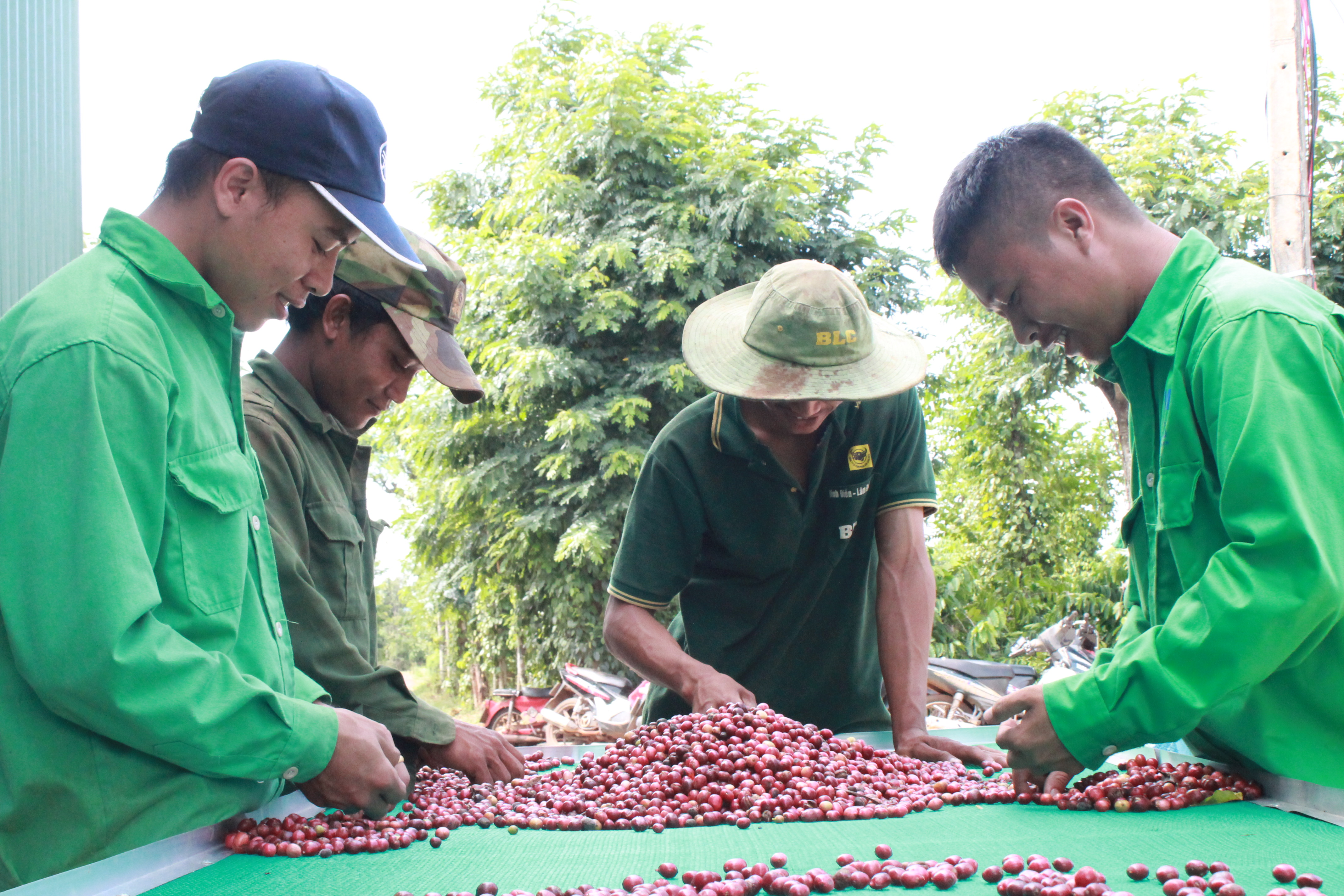 Thành phố Buôn Ma Thuột đề nghị xét công nhận hoàn thành nhiệm vụ xây dựng nông thôn mới sớm hơn lộ trình
