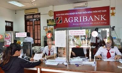 Quyết định về việc cho phép Ngân hàng Nông nghiệp và Phát triển nông thôn Việt Nam - Chi nhánh Ea Phê Đắk Lắk gia hạn sử dụng đối với 198,5 m2 đất tại xã Ea Phê, huyện Krông Pắc để tiếp tục sử dụng vào mục đích đất thương mại, dịch vụ (Văn phòng làm việc)
