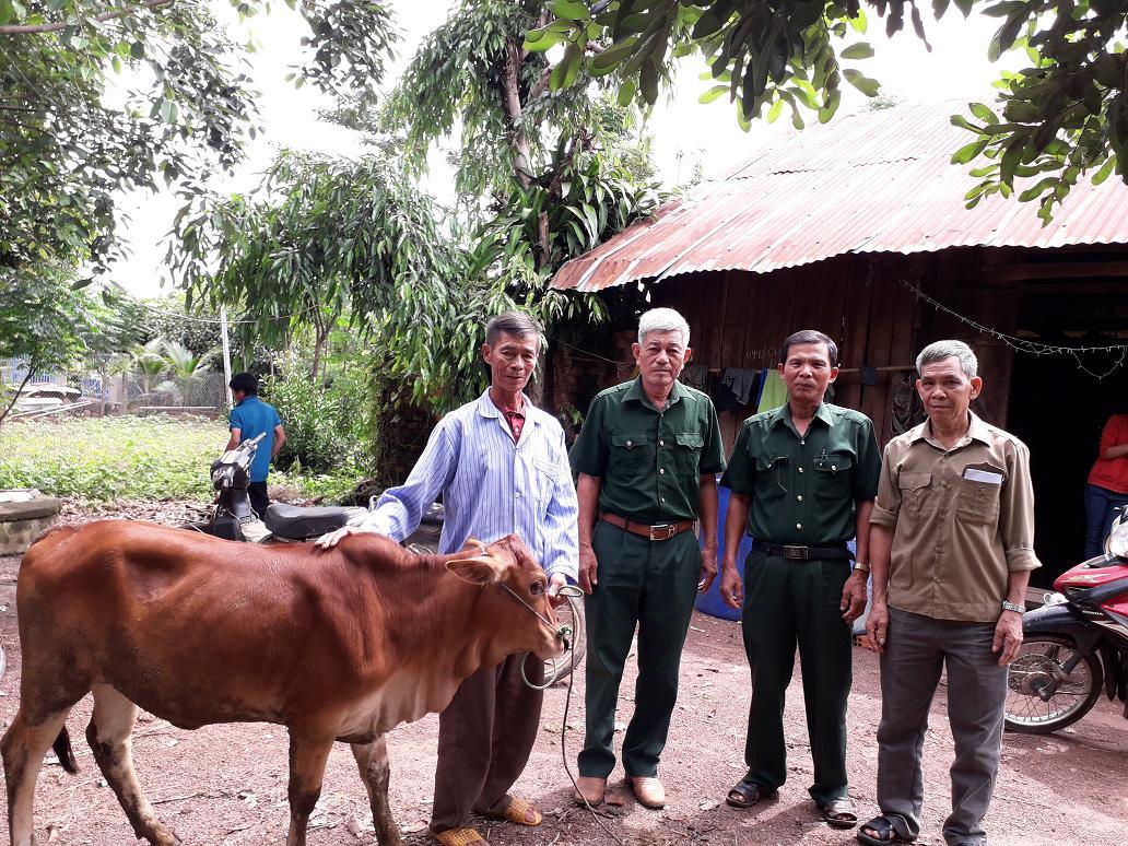 Hội Cựu Chiến binh huyện Buôn Đôn tặng bò cho hội viên nghèo